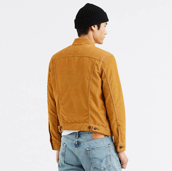 Levi's classic trucker jacket in light brown cord